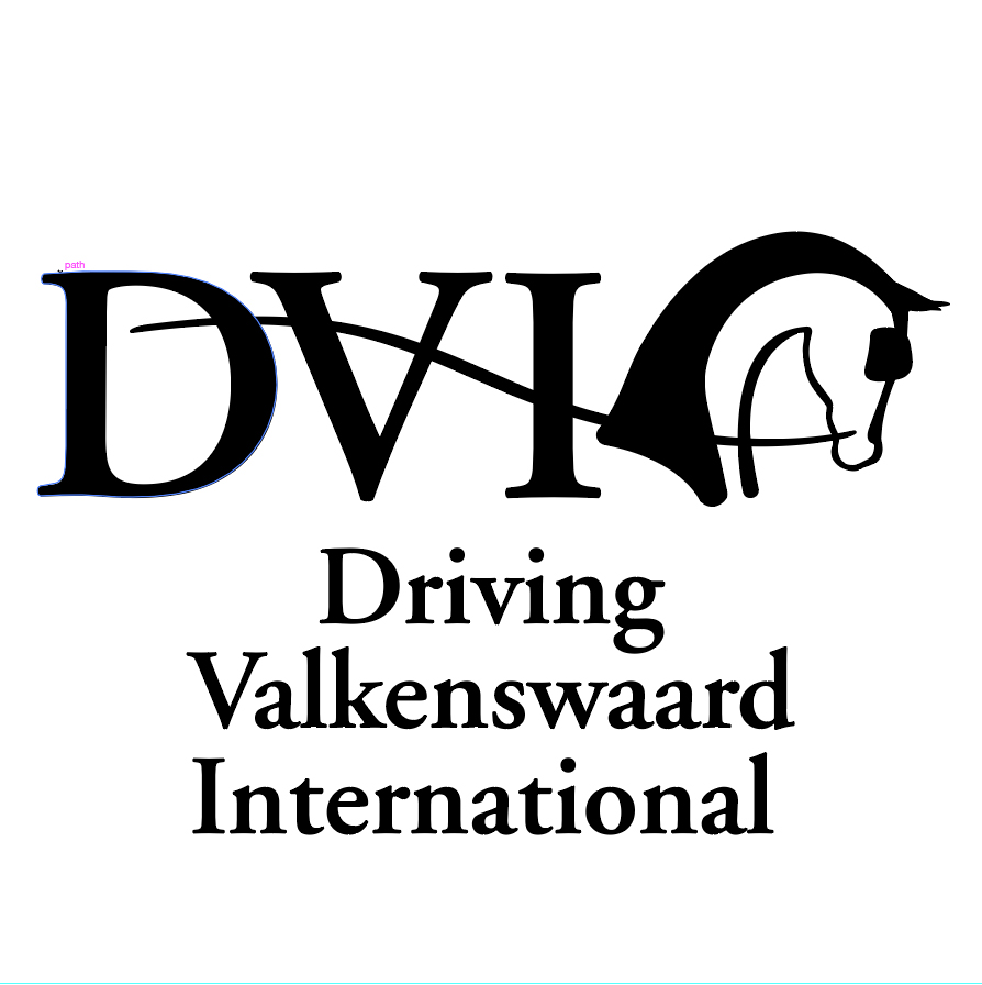Driving Valkenswaard International Executive Lunch 2018